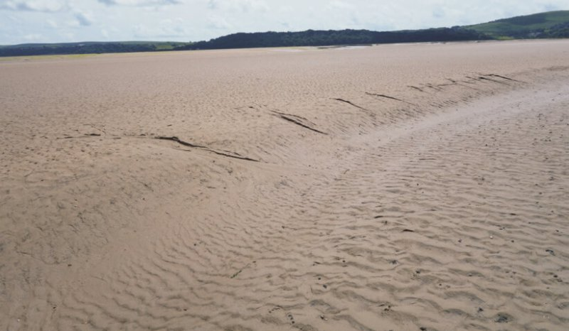 Falling stage microchannel cuts on the margin of a tidal creek, note tranverse rippled sands on base of the creek channel, Loughor Estuary