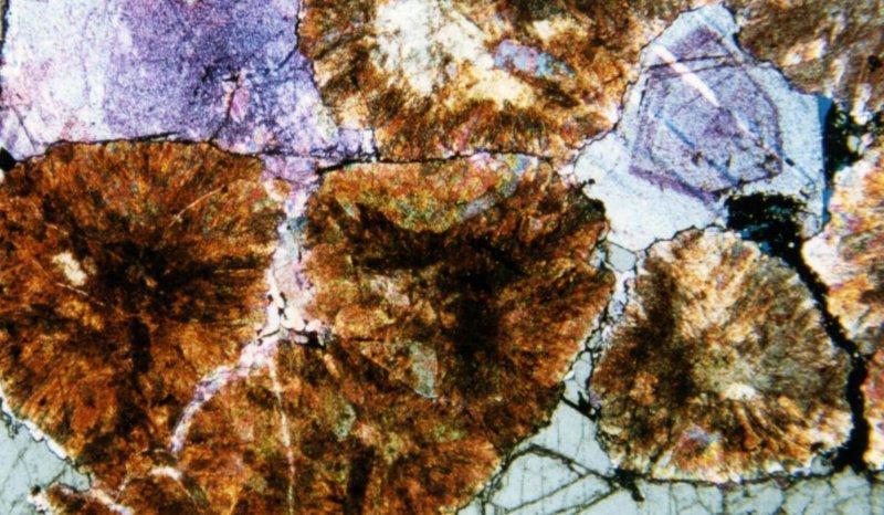 Zechstein dedolomitized spherulitic limestone, with oil present in inter-spherulite halite cements