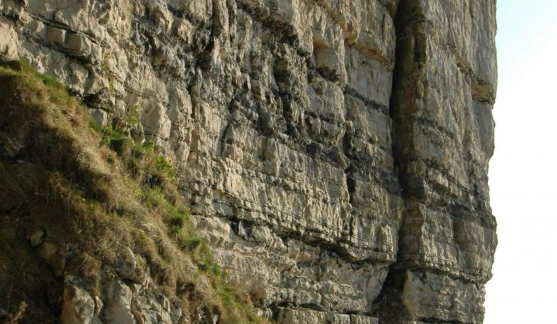 Chert rich ramp carbonates, Isle of Purbeck