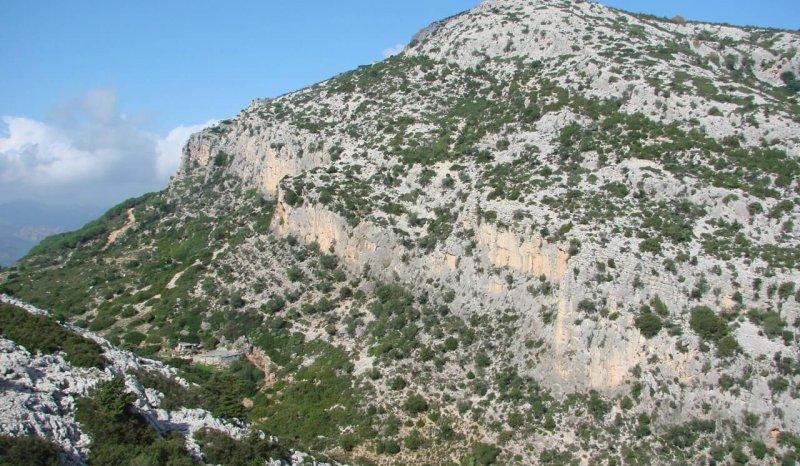 Middle Jurassic – Berriasian succession of eastern Sardinia