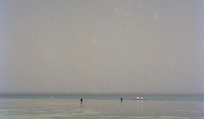 Subtidal / sabkha modern day sediments, Abu Dhabi