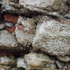 Zechstein dedolomite, Seaham Harbour