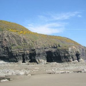 Namurian Middle Shale overlain by Upper Sanstone Group, Telpyn Point, S Wales