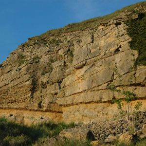Large scale cross beds within Middle Jurassic oolites Cotswolds