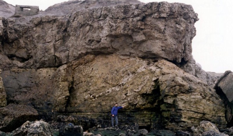 Field trip to the Zechstein collapse breccia, Trow Point, South Shields