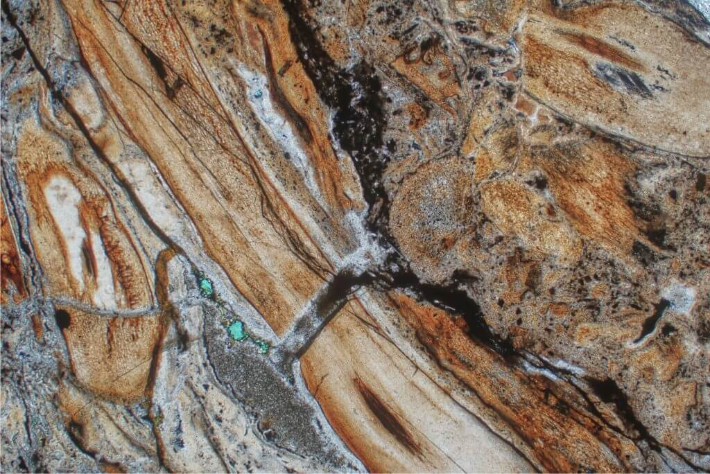 Thin section of a condensed lag deposit consisting almost entirely of phosphatised bone fragments. Sample from the basal Eocene Dababiya Quarry Member of the Esna Shale, onshore Egypt