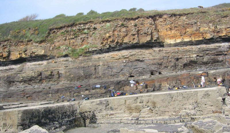 Oolithica fieldtrip to mouthbar to distributary channel facies in Westphalian A Coal Measures, Amroth, S Wales
