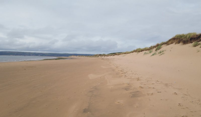 Wave dominated beach backed by aeolian dune sandstones, Loughor Estuary