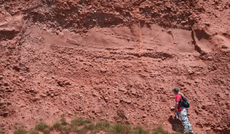 Oolithica Fieldtrip to Budleigh Salterton - alluvial fan Triassic Pebble Beds