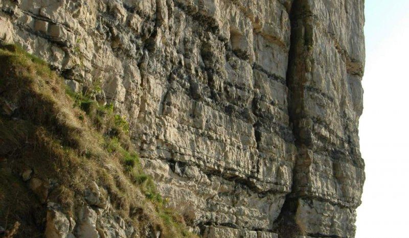 Chert rich ramp carbonates, Isle of Purbeck