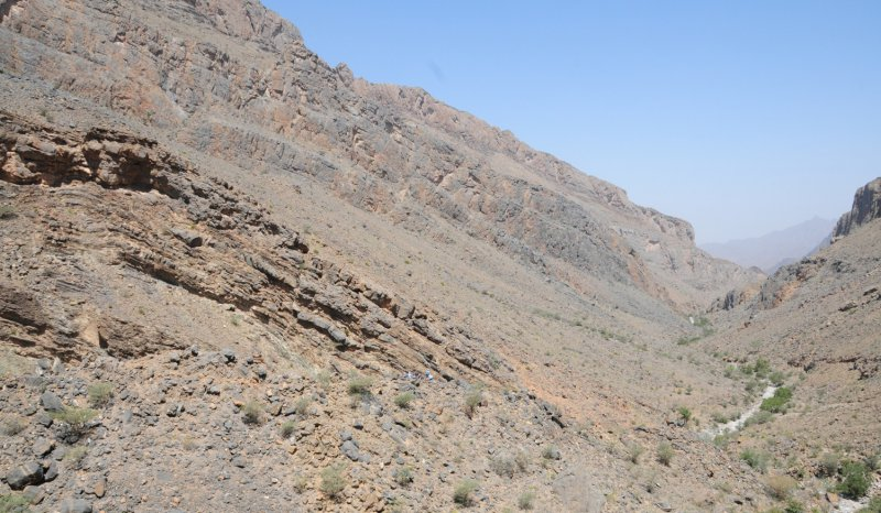 Hawasinah Window: offlapping Jurassic – Cretaceous shelf margin