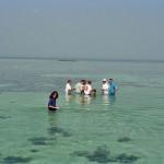 Fieldtrop to present day subtidal sediments, Trucial Coast, Abu Dhabi